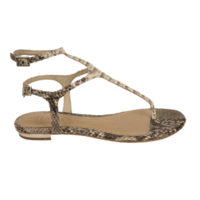 Galey Snake by Schutz Shoes